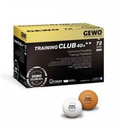 Piłki gewo training club